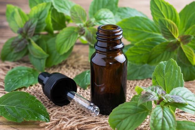Huile essentielle de menthe parfumée dans des bulles de verre foncé