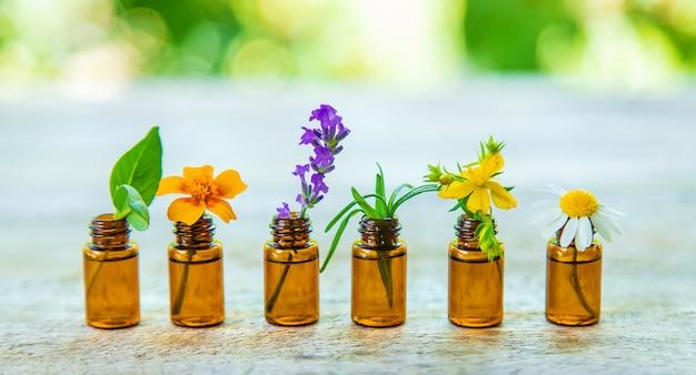 Huiles essentielles et extraits de plantes en petites bouteilles. mise au point sélective. nature.