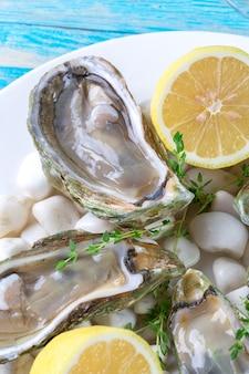 Huîtres crues au citron et à la glace