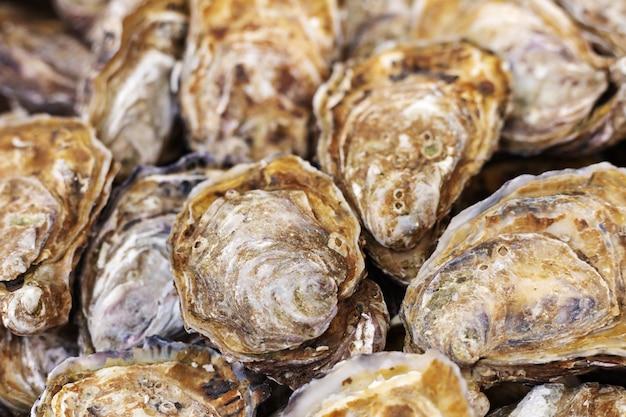 Huîtres crues crues en vente au marché aux poissons. fruits de mer, marché aux coquillages. huîtres en arrière-plan