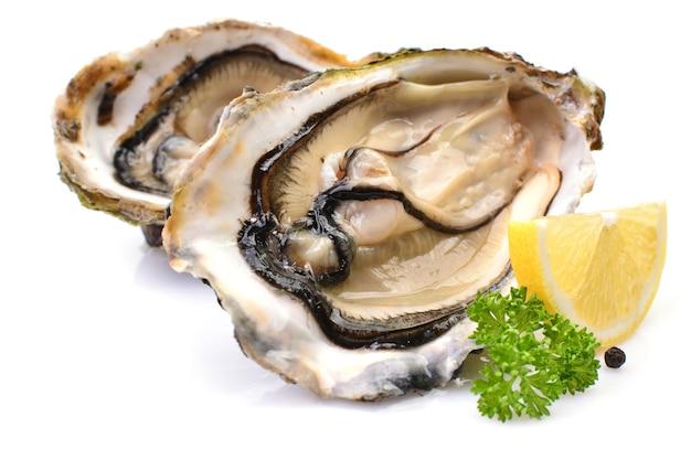 Huîtres sur fond blanc au citron