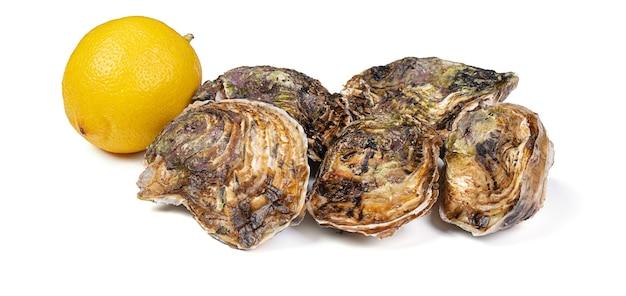 Huîtres fraîches isolées avec un citron sur un mur blanc