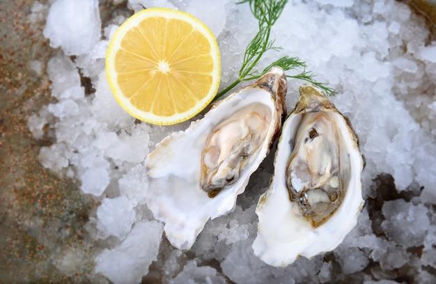 Huîtres de france ouvertes et recouvertes de glace et de citron