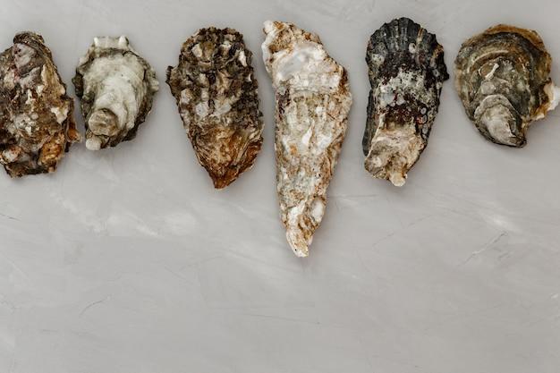 Huîtres sur table grise.