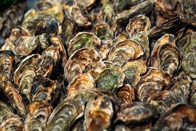 Huîtres en vente sur le marché des fruits de mer. étal du marché aux poissons plein d'huîtres fraîches.