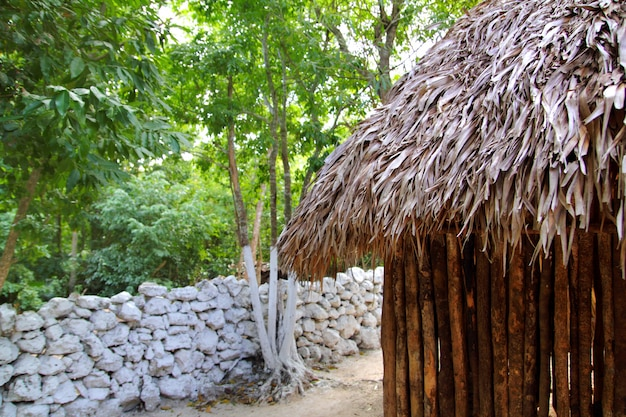 Hutte palapa jungle mexicaine mur de toit de maison maya