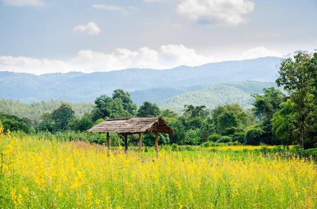 Huttes traditionnelles de la thaïlande.