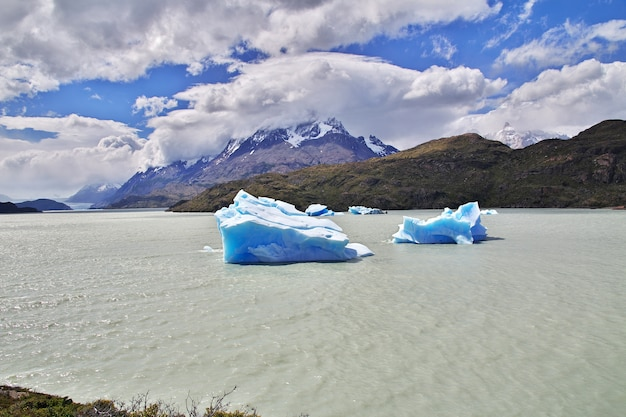 Iceberg sur lago grey, parc national torres del paine, patagonie, chili
