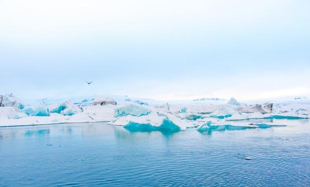 Icebergs dans la lagune des glaciers, en islande.