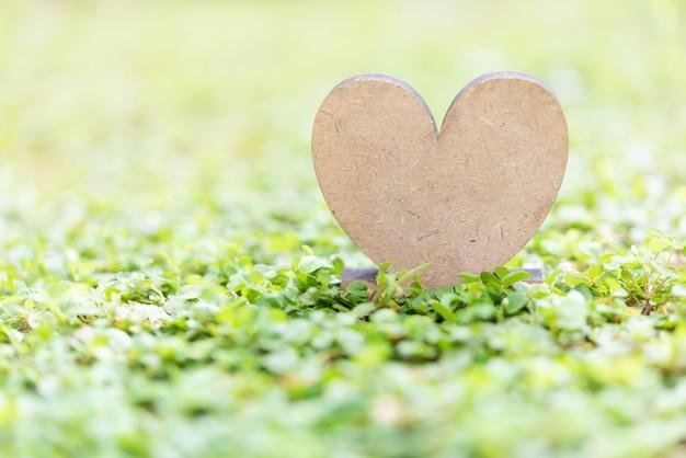 Icône de coeur en bois sur fond d'herbe verte fraîche dans la lumière du soleil du matin, espace pour le texte