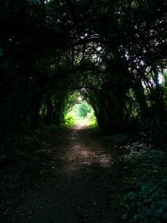 Il ya la lumière au bout du tunnel!