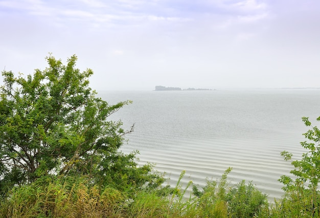 Une île de la mer d'ob le rivage du réservoir de novossibirsk dans le brouillard du matin sous un ciel bleu