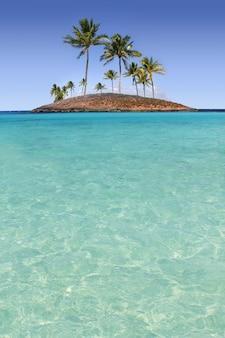 Île paradisiaque palmier plage tropicale turquoise