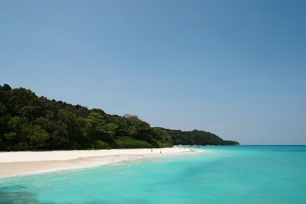 Île tachai, groupe d'îles similan, phang nga, thaïlande
