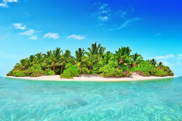 Île tropicale entière dans l'atoll dans l'océan tropical. île subtropicale inhabitée et sauvage avec des palmiers. partie équatoriale de l'océan, station balnéaire tropicale.