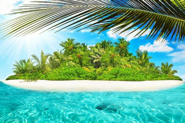Île tropicale entière dans l'atoll dans l'océan tropical un jour d'été. île subtropicale inhabitée et sauvage avec des palmiers. partie équatoriale de l'océan, station balnéaire tropicale.