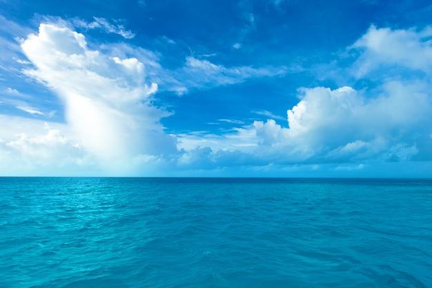 Île tropicale des maldives avec plage de sable blanc et mer