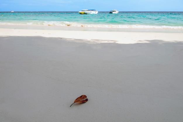 Îles similan, province de phang nga belle mer dans le sud de la thaïlande,