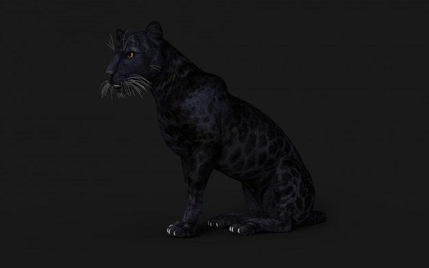 Illustration 3d black panther isoler sur fond noir
