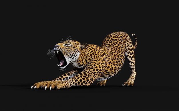 Illustration 3d de léopard isolé sur fond noir