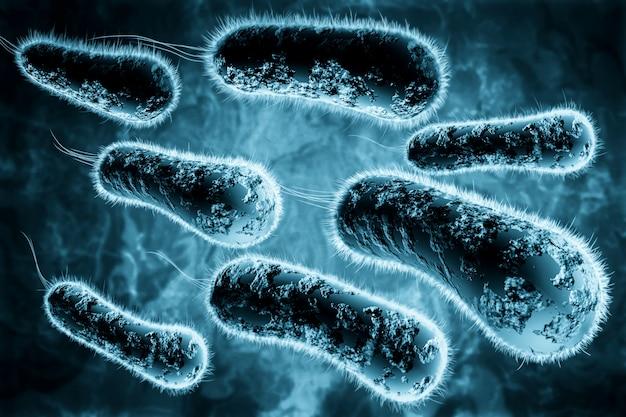 Illustration 3d numérique de bactéries