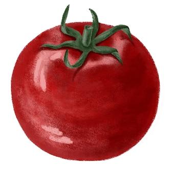 Illustration d'aliments entiers à la tomate rouge, légumes frais, bio, végétalien
