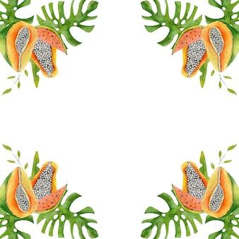 Illustration aquarelle de cadre de fruits tropicaux papaye mangue monstera feuilles pour texte sur blanc
