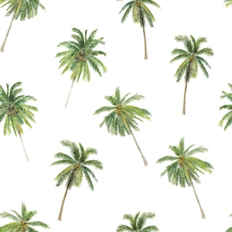 Illustration à l'aquarelle du modèle sans couture de palmiers dessinés à la main avec des palmiers tropicaux