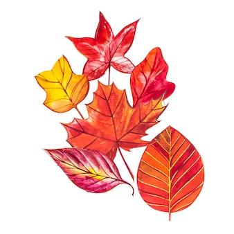 Illustration aquarelle avec des feuilles d'automne rouges, orange, brunes et jaunes.