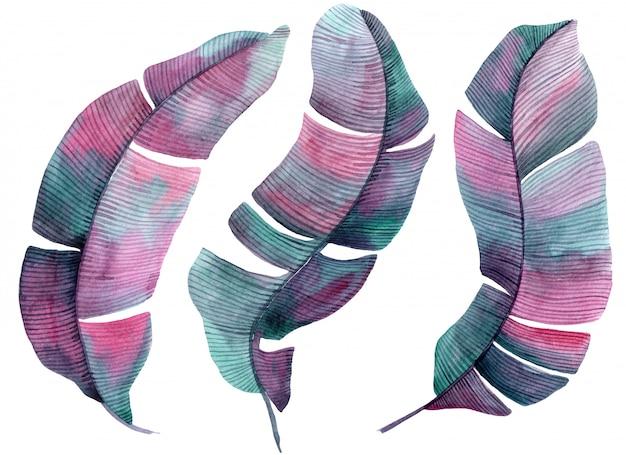 Illustration aquarelle avec des feuilles de palmier rose et lilas