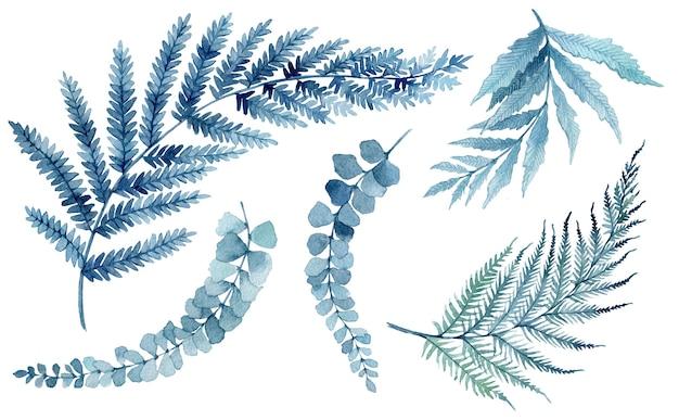 Illustration aquarelle de feuilles tropicales bleues, branches vertes, fougère