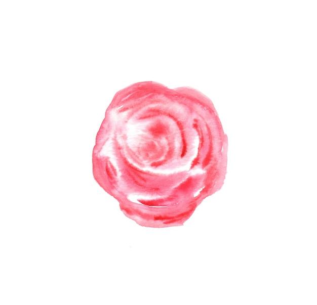 Illustration aquarelle de fleur rose