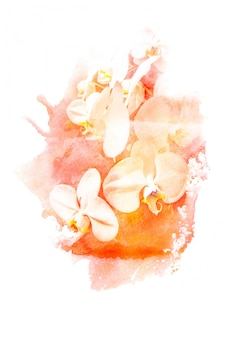 Illustration aquarelle de fleur.