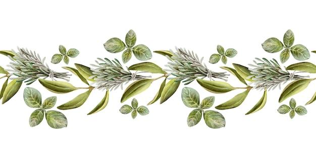 Illustration aquarelle d'une frontière avec des feuilles, des fruits et de l'huile d'olive. huile et herbes aromatiques