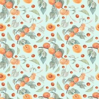 Illustration aquarelle de fruits abricots modèle sans couture dessinés à la main