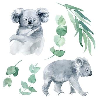 Illustration aquarelle d'un koala avec des branches d'eucalyptus. le symbole de l'australie est un mignon koala avec un ourson dans le dos. croquis de koala dessiné à la main.