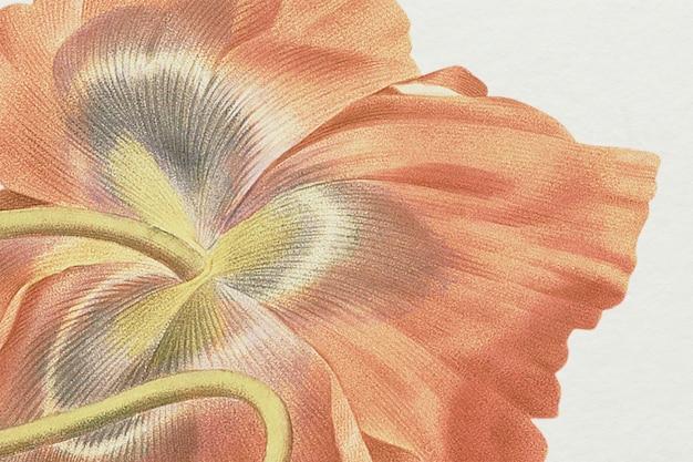Illustration de fond de fleur de printemps vintage, remixée à partir d'œuvres d'art du domaine public