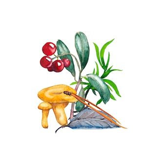 Illustration de girolles, airelles rouges, herbes, feuilles et aiguilles de pin. peinture à l'aquarelle.