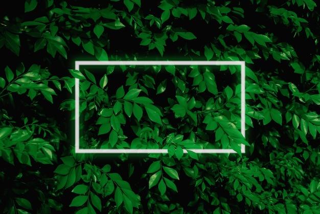 Illustration d'une grande feuille vert foncé avec une lumière au néon douce un cadre rectangulaire à led d'eau verte