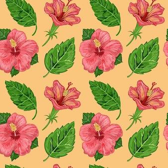Illustration d'un modèle sans couture d'hibiscus plantes fleurs et feuilles
