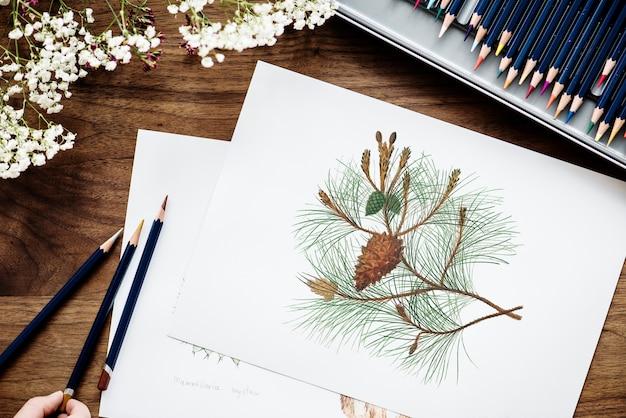 Illustrationist coloring