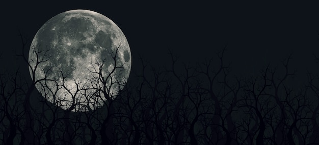 Illustrations 3d fantasmagoriques de montagnes panoramiques, d'arbres et de lunes. il y a une montagne peu profonde et profonde avec du brouillard. et la lune dans la forêt la nuit