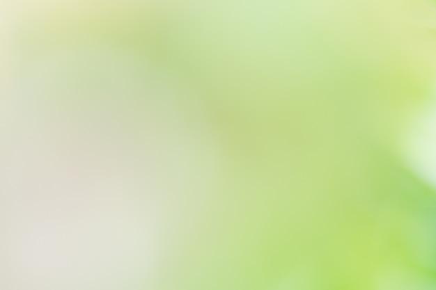 L'image d'arrière-plan est des feuilles vertes floues se sentant rafraîchies.