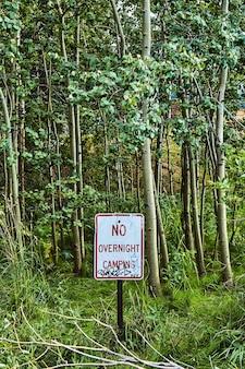 Image du panneau d'avertissement vertical pas de camping de nuit avec des graffitis dans les arbres de la forêt de trembles