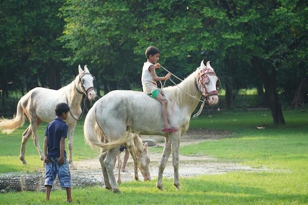 Image d'enfants d'équitation dans le parc