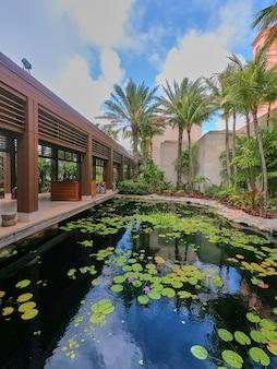 Image d'un étang de koi sous les tropiques avec une passerelle couverte et des palmiers