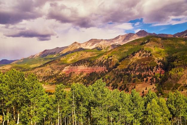 Image de forêt de trembles avec une grande chaîne de montagnes en arrière-plan et des nuages sombres