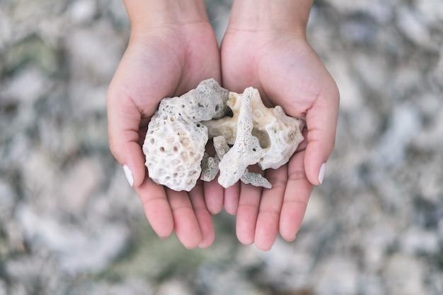 Image gros plan des mains tenant et montrant les coraux sur la plage