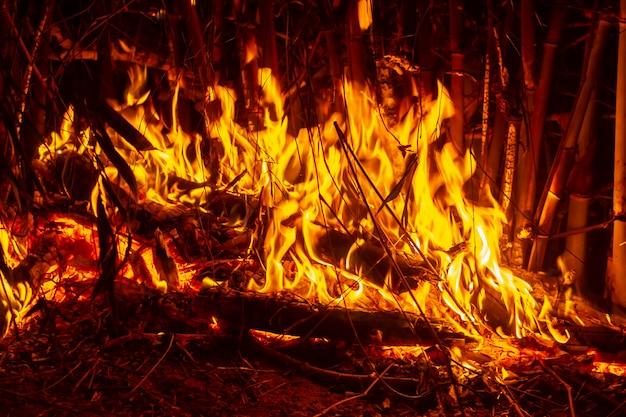 L'image de journaux dans le feu brûlant. flamme du feu brûlant.