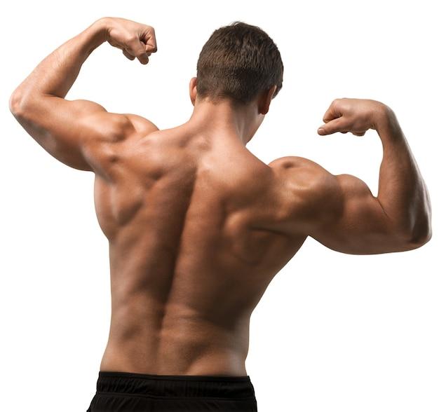 Image recadrée d'un bodybuilder montrant ses muscles du dos, des épaules, des triceps et des biceps